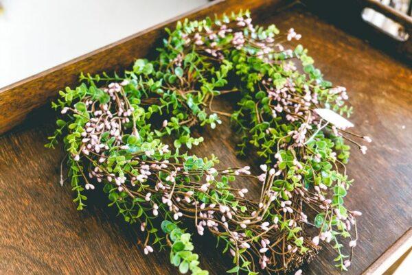 Beary-heart-wreath-02