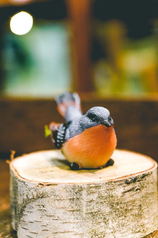 Bird on branch-03