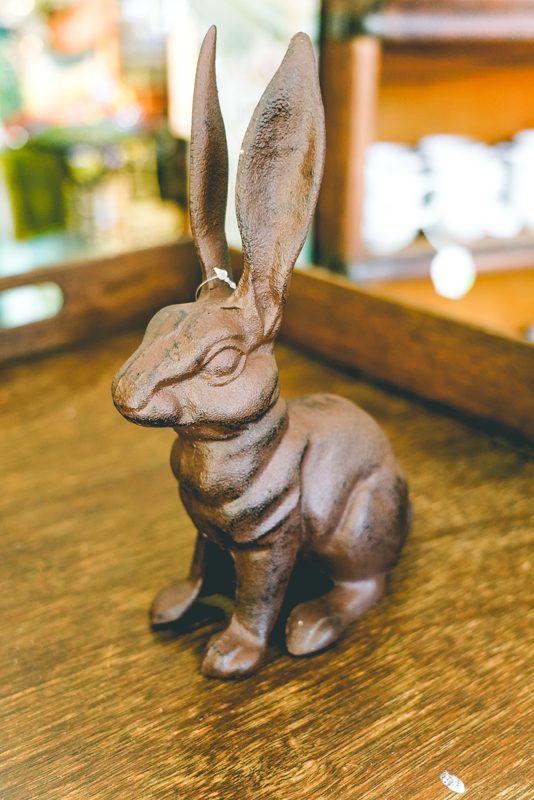 Brown-bunny-02