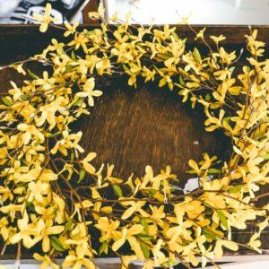 Forsythia-Wreath-01