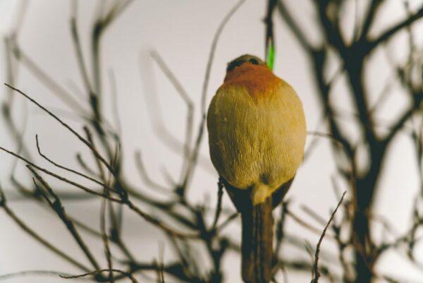 Hanging-birds-03
