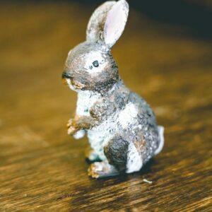 Mini bunny-001