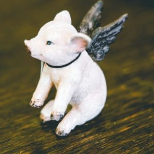 Mini flying pig-001