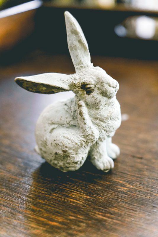 Snow Bunny-002